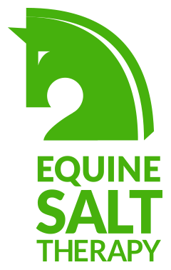 Equine Salt Therapy