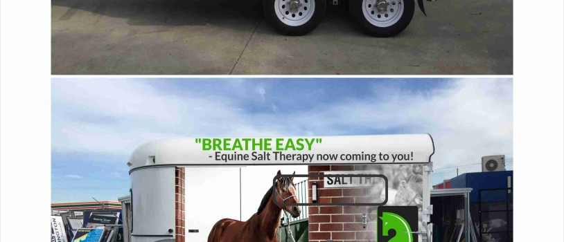 INTRODUCING MOBILE EQUINE SALT THERAPY – Business opportunities avail.